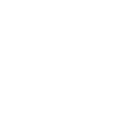 Die Linke.SDS